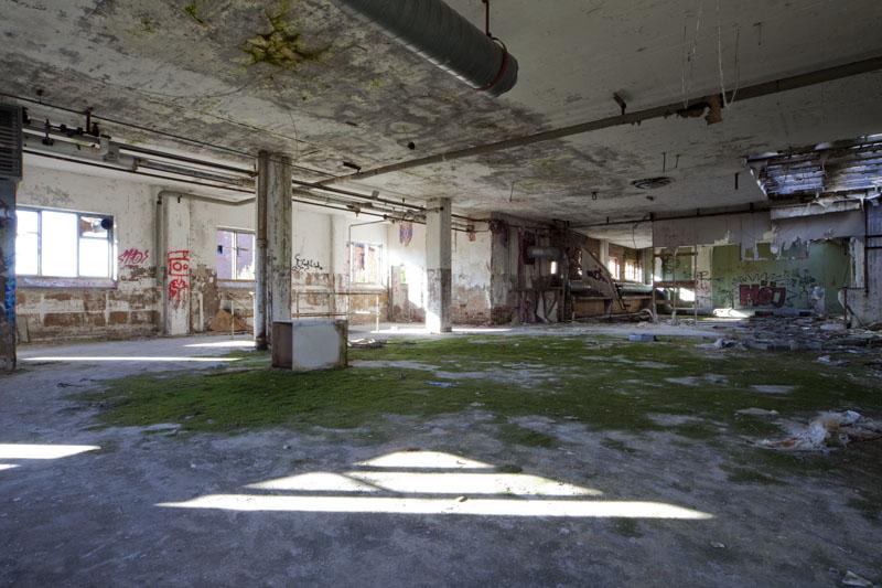 Fredriksberg paper mill green moss room