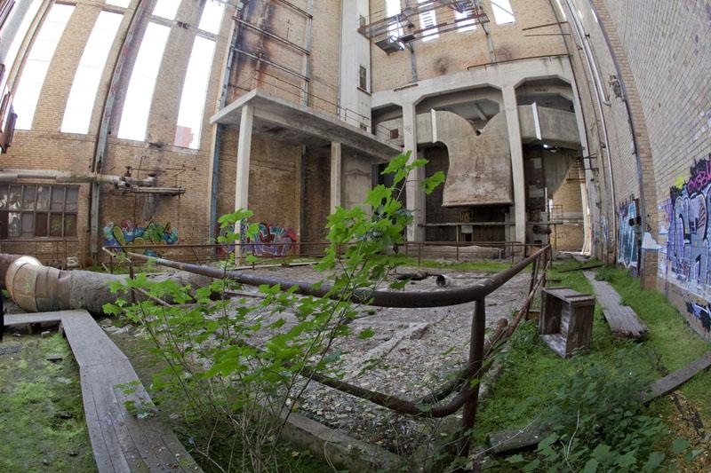 Fredriksberg paper mill vegetation